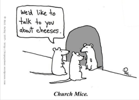 mice-want-to-talk-about-cheeses