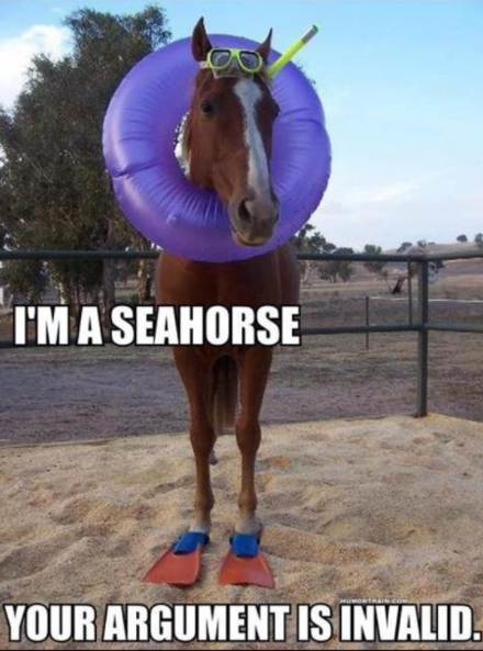 im-a-seahorse-argument-is-invalid